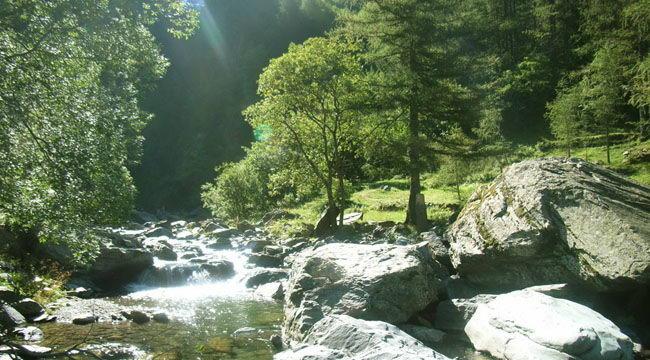 Itinerari naturalistici della Valle Brembana