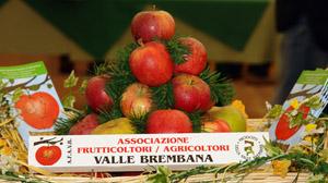 frutticoltori-valle-brembana